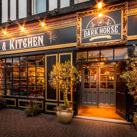 The Dark Horse Moseley